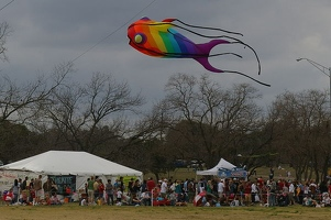 Rainbow fish kite