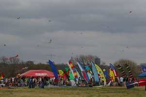 Flags at Zilker Park Kite Festival