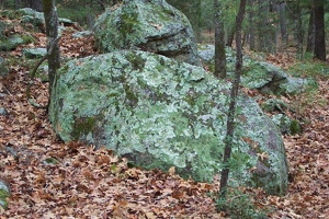 Big rock with lichen