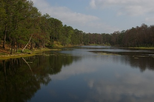 Lake in Bastrop State Park