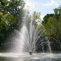 Fountain in lake
