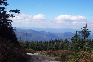View from trail on Mount Mitchell
