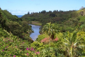 River valley in National Tropical Botanical Garden