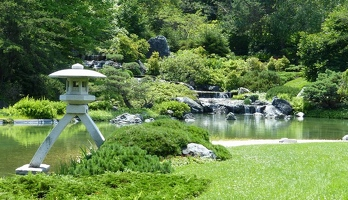 Pond in Japanese garden