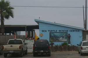 Sea Turtle Rescue Center