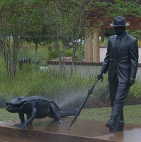 Mr. Fraser walking his alligator in the rain