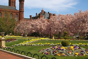 Gardens in front of Smithsonian Castle