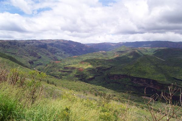 Overlook from Waimea Canyon Drive
